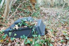 Aparato de TV Abandonado en maderas con la hiedra Imagen de archivo libre de regalías