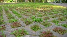 Aparcamiento de Eco con la hierba almacen de metraje de vídeo