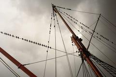 Aparejo de la nave y cuerda de la vela con los palos Imágenes de archivo libres de regalías
