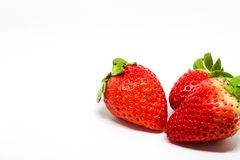 Three Strawberries on a White Background. This is apart of a collection of images of various fruits taken on different backgrounds. Experimenting with a Lightbox royalty free stock images