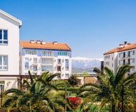 Apartamentów na najwyższym piętrze mieszkania z drzewkami palmowymi zdjęcie stock