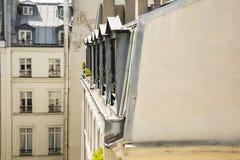 Apartamento alineado Windows de París, Francia imágenes de archivo libres de regalías