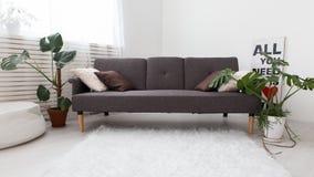 Apartamento-estudio moderno con las plantas vivas gris en el interior Sofá en la sala de estar Fotos de archivo