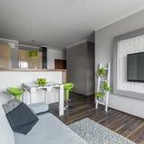 Apartamento moderno pequeno mas funcional Imagens de Stock Royalty Free