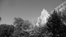 Apartamentos da avenida de NYC 5o com árvores B&W Imagem de Stock