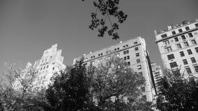 Apartamentos da avenida de NYC 5o com árvores B&W Fotos de Stock