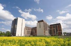Apartamentos de las propiedades inmobiliarias Imagen de archivo libre de regalías
