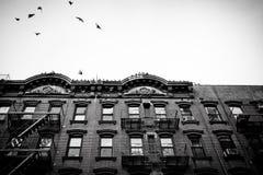 Apartamentos do Tenement de NYC foto de stock
