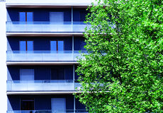 Apartment Blocks. Modern apartment/office blocks with greenery royalty free stock images