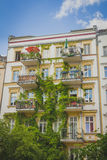 Apartment building covered with green Ivy plant Stock Images