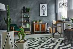 Apartment with decorative cactus. Grey apartment with decorative cactus, carpet and wooden furniture Royalty Free Stock Photo
