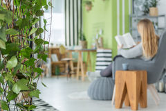 Apartment with decorative ivy garland. Green apartment with decorative ivy garland and grey armchair royalty free stock photo