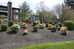 Apartment landscaping design Stock Photography