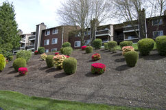 Apartment landscaping design Stock Images