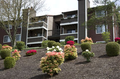 Apartment landscaping design Stock Image