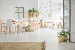 Apartment with white walls. Modern apartment with white walls, wooden furniture and rattan accessories royalty free stock photography