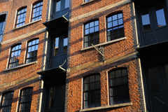 Apartment Windows. Basking in the morning sunshine Royalty Free Stock Images