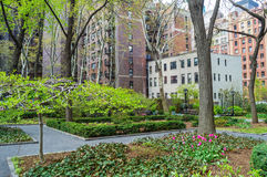 Apartments Over Park Royalty Free Stock Photography