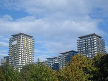 Apartments towers behind trees Stock Photography