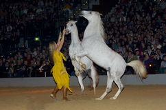 Apassionata horse show Stock Photo