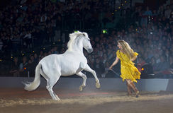 Apassionata horse show Stock Photography