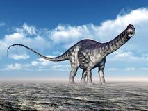 Apatosauro del dinosauro Fotografie Stock