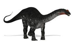 Apatosaurus Foto de archivo libre de regalías