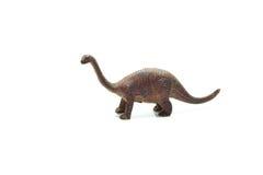 Apatosaurus Στοκ εικόνα με δικαίωμα ελεύθερης χρήσης