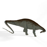 Apatosaurus aka Brontosaurus. Rendered Image of a Dinosaur Image contains a Clipping Path vector illustration