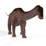 Apatosaurus aka Brontosaurus. Rendered Image of a Dinosaur Image contains a Clipping Path royalty free illustration