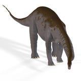 Apatosaurus aka Brontosaurus. Rendered Image of a Dinosaur Image contains a Clipping Path stock illustration