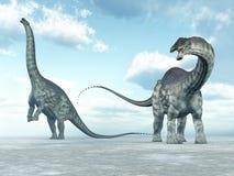 Apatosaurus del dinosaurio Fotografía de archivo