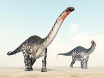 Apatosaurus del dinosaurio Imagenes de archivo