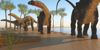 Apatosaurus Dinosaur Shore Royalty Free Stock Images