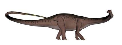Apatosaurus dinosaur walking - 3D render Royalty Free Stock Photography