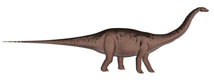 Apatosaurus dinosaur walking - 3D render Stock Images