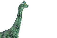 Apatosaurus dinosaurs toy isolated on white. Stock Photos