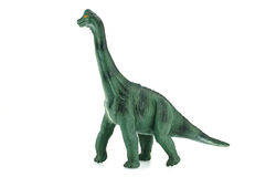 Apatosaurus dinosaurs toy on white background. Dinosaurs toy on white background Stock Photos