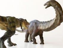 An Apatosaurus Menaced by a Tyrannosaurus Rex. An Herbivorous Apatosaurus Stalked by a Carnivorous Tyrannosaurus Rex Stock Image