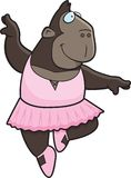 Ape Ballerina Stock Images