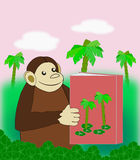 Ape with Bok. A funny monkey reading a book in the jungle Stock Images
