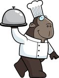 Ape Chef Stock Photo