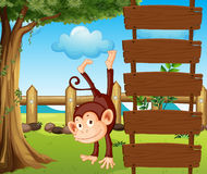 An ape beside the empty wooden signboards Stock Photo