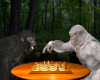 Ape, Gorilla Play Chess, Competition Illustration. A fun and funny image of two gorillas playing chess in the jungle. There is a black and white gorilla as they Royalty Free Stock Images