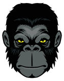 Ape head mascot Stock Images