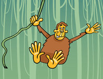 Ape in the jungle cartoon illustration Stock Image