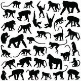 Ape and Monkey. Collection -  silhouette illustration Royalty Free Stock Photos