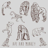 Ape and Monkey marker sketch drawing Royalty Free Stock Photography