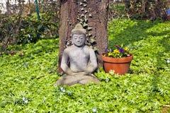 Apedreje buddha na frente de uma árvore de cereja Foto de Stock Royalty Free