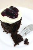 Apelmace el chocolate con el queso poner crema y el blueber fresco Fotografía de archivo libre de regalías